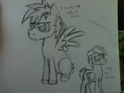 Size: 960x720 | Tagged: safe, artist:zombietator, oc, oc only, pegasus, pony, duo, frown, lineart, male, pegasus oc, stallion, traditional art, wings
