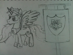 Size: 960x720 | Tagged: safe, artist:zombietator, oc, oc only, alicorn, pony, female, flag, hoof shoes, lineart, mare, peytral, solo, traditional art