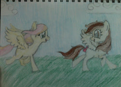 Size: 999x719 | Tagged: safe, alternate version, artist:zombietator, oc, oc only, pegasus, pony, duo, eyelashes, female, looking back, mare, pegasus oc, running, smiling, traditional art, wings