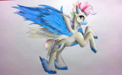 Size: 2495x1536 | Tagged: safe, artist:wixi2000, fluttershy, rainbow dash, pegasus, pony, chest fluff, female, fusion, looking back, mare, multiple wings, rearing, simple background, six wings, smiling, solo, spread wings, traditional art, unshorn fetlocks, white background, wings