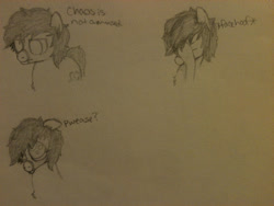 Size: 2048x1536   Tagged: safe, artist:zombietator, oc, oc only, oc:chaos, earth pony, pony, bust, earth pony oc, expressions, facehoof, lineart, male, stallion, traditional art