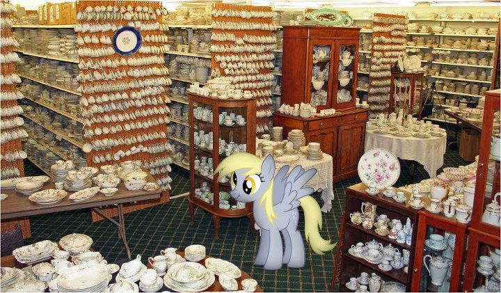 112719__safe_photo_vector_derpy+hooves_pony_ponies+in+real+life_funny_this+will+end+in+tears_this+will+not+end+well_tea+cups.jpg