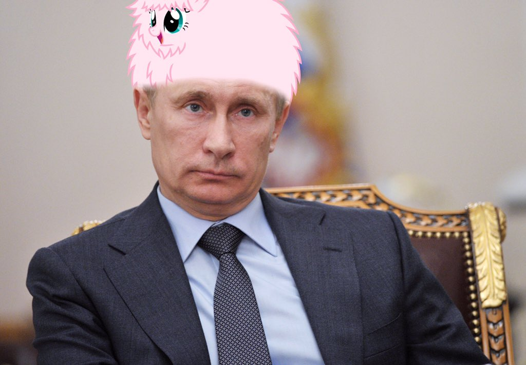 Putin with a Fluffle Puff hat